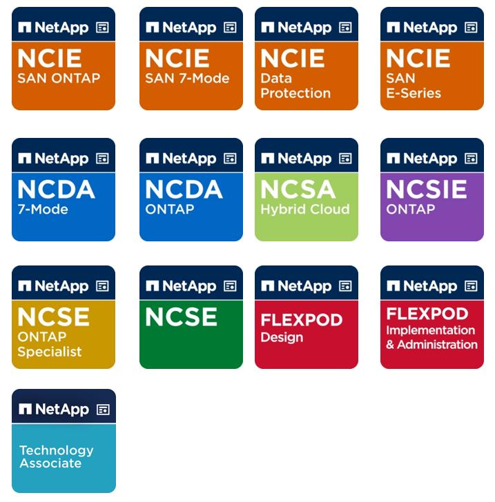 NetApp Badges Image